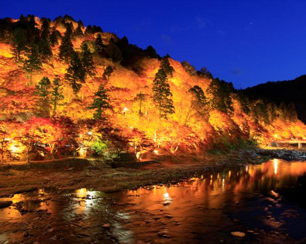 香嵐渓もみじライトアップ
