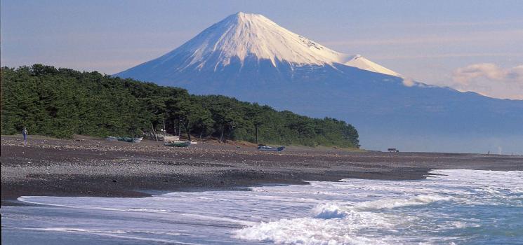 海山歴史広大な静岡市で特別な旅