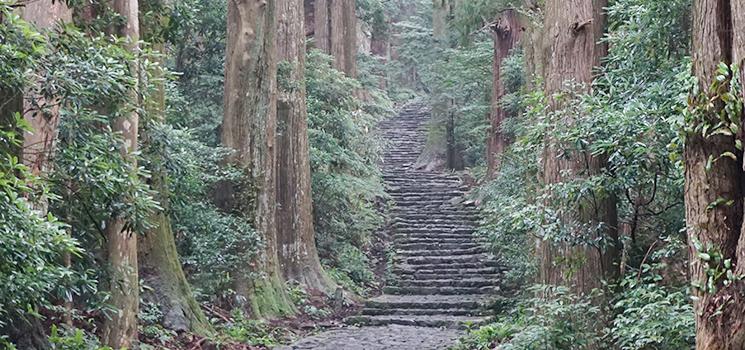 巡礼の聖地和歌山県のパワー感じて